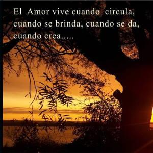 Vivir con amor..esa es la respuesta.